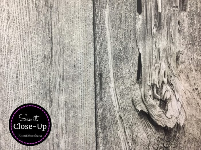 A close up photo of a grey barn wood wall mural