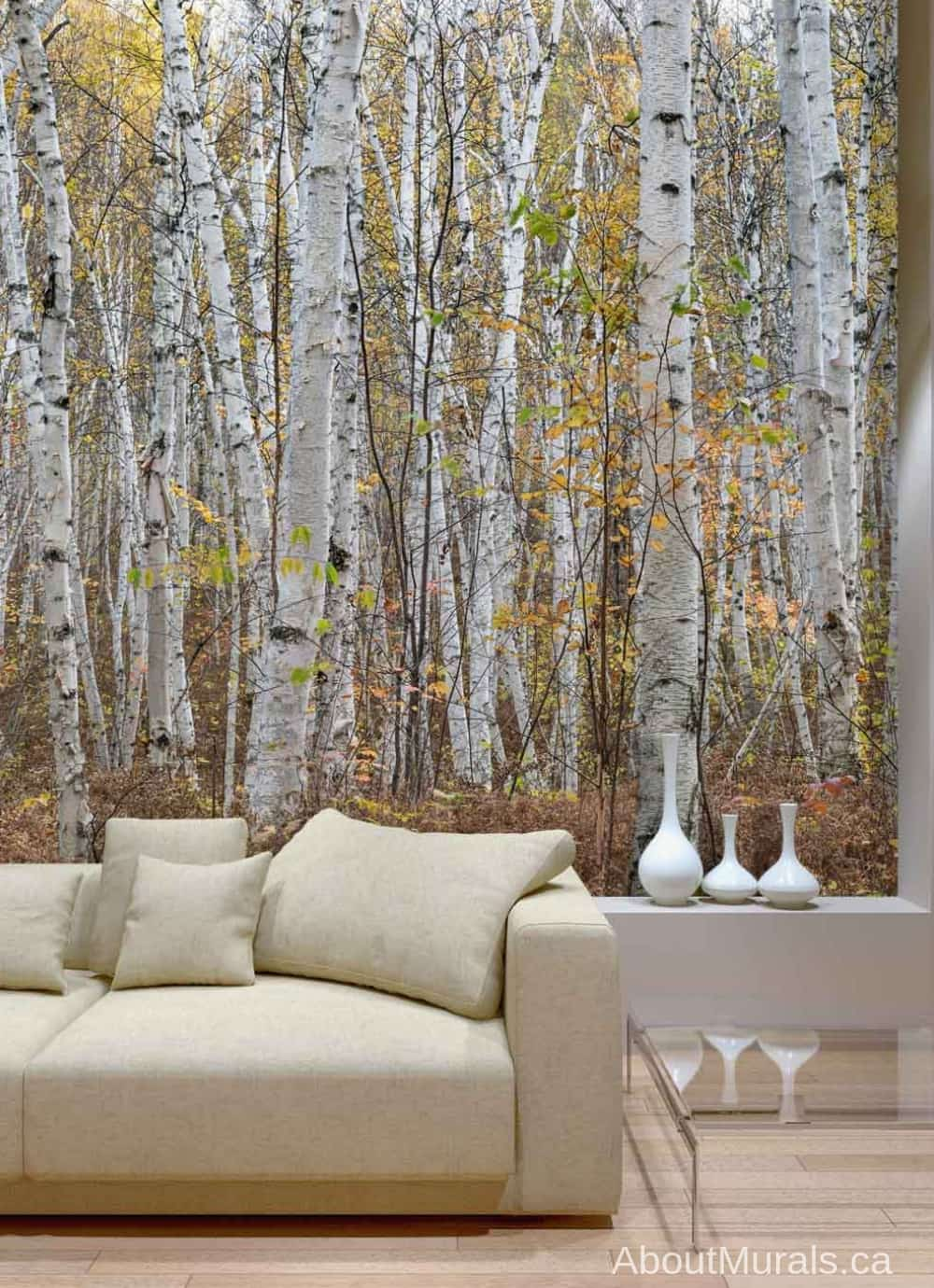 Infinite Birch Forest Wall Mural in a living room, sold by AboutMurals.ca