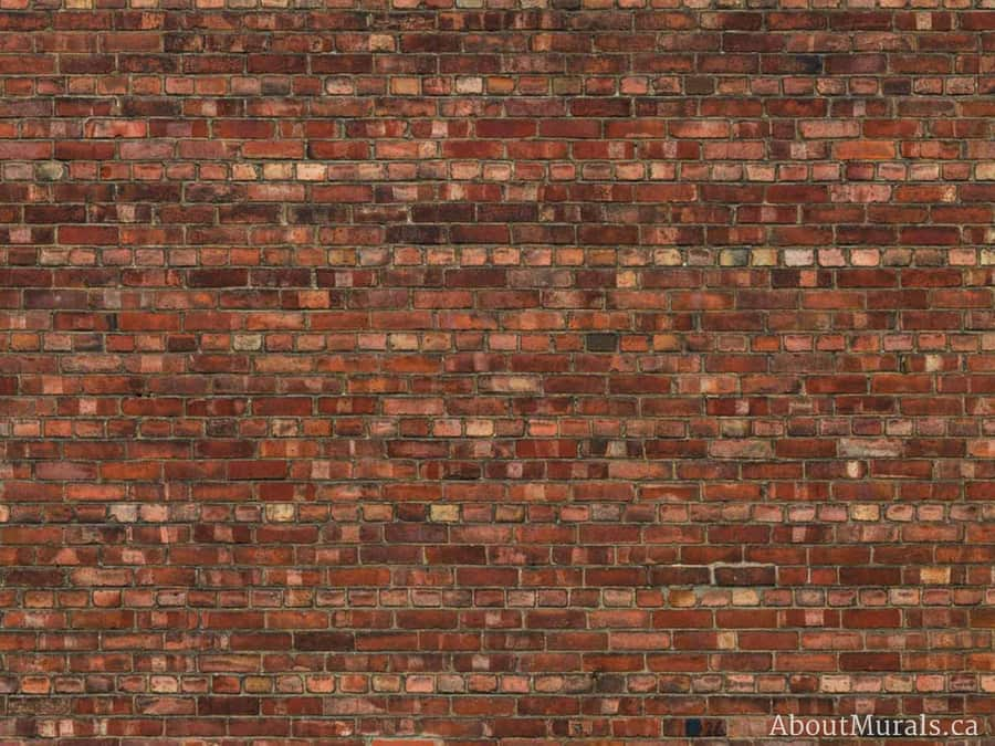 An old brick wallpaper, sold by AboutMurals.ca, in a warm orange colour