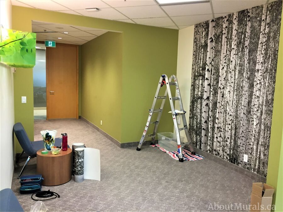 A birch tree wallpaper installed at Jamieson Laboratories by AboutMurals.ca