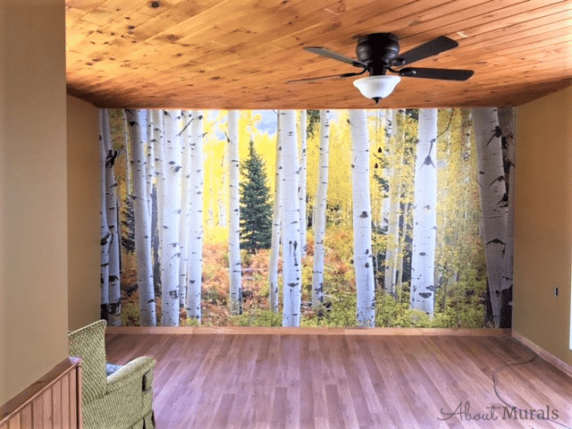 This Aspen tree wallpaper is seen in a cottage living room. Birch Wallpaper sold by AboutMurals.ca