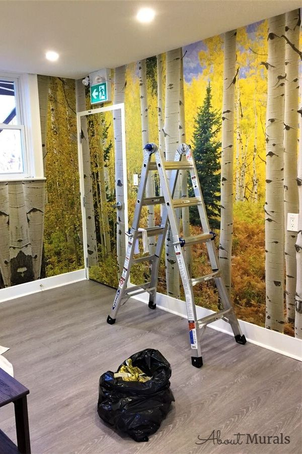 This golden Aspen tree wallpaper was installed in a commercial interior, Pete & Kay Diner, by Adrienne of AboutMurals.ca
